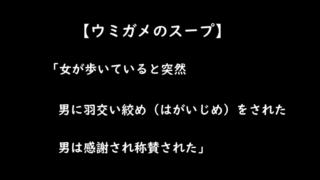 【ウミガメのスープ/水平思考パズル】