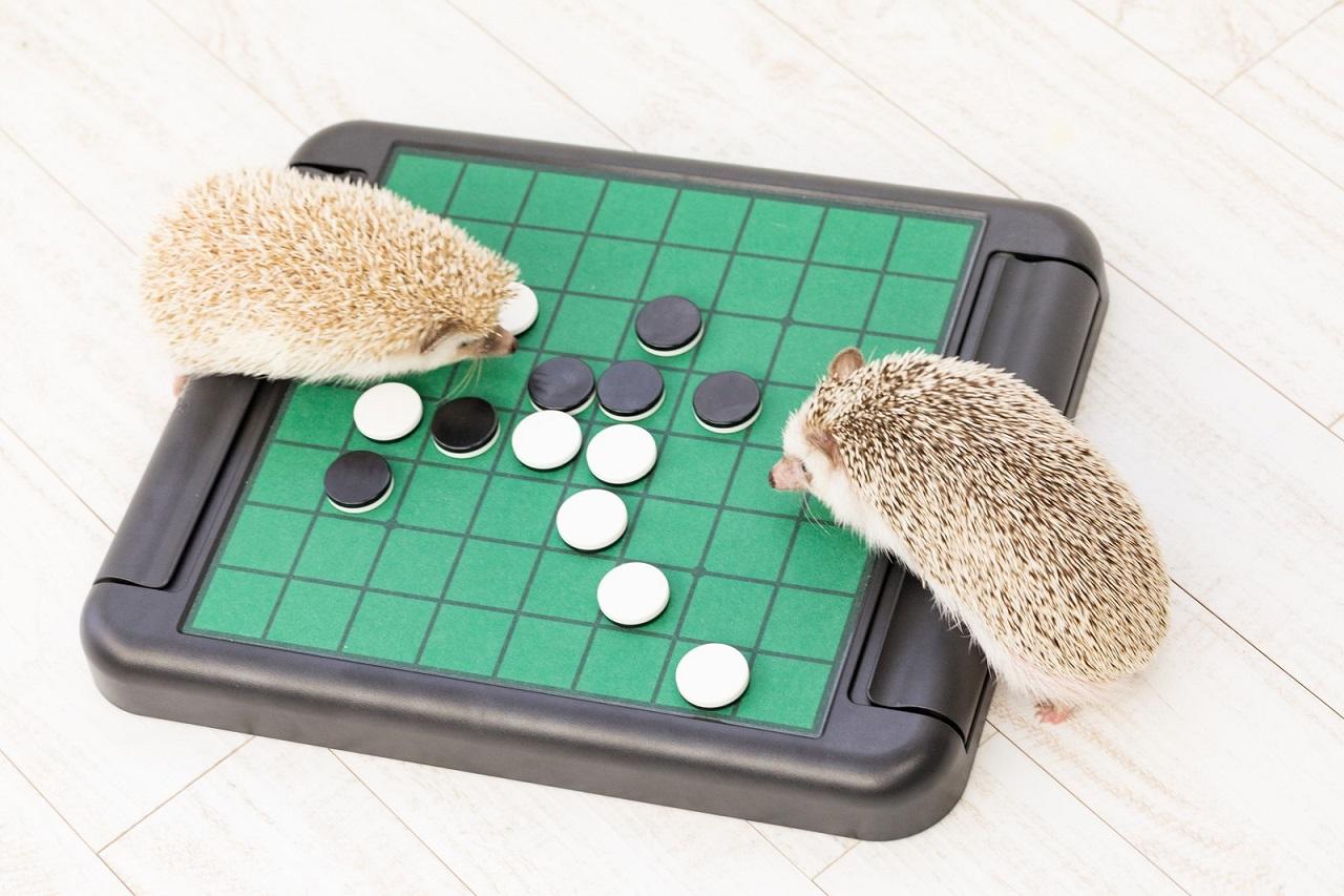 【初心者におすすめゲーム!】